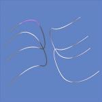 reverse_wires2